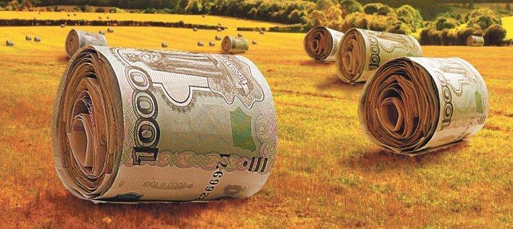 Всё, что нужно знать о кредите фермерам